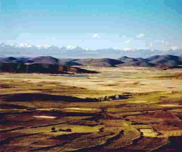 Culture écologique sur l'Altiplano bolivien